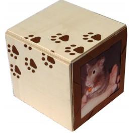 http://www.eternimalis.fr/66-thickbox_default/eternibox-cercueil-biodegradable-pour-petits-animaux-de-compagnie.jpg