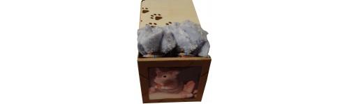 Cercueil animalier Rongeur